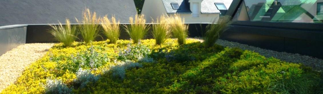 Etanch it terrasse le toit du monde - Entretien toit vegetalise ...
